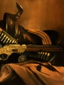 The Gun That Won The West, Winchester 1873
